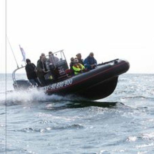 Speedboot fahren Grömitz