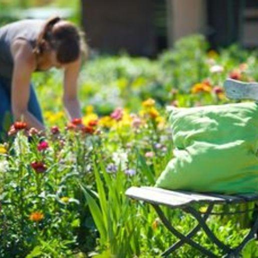 Urban Gardening Norderstedt