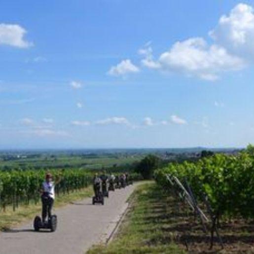 Segway Panorama Tour Landau in der Pfalz