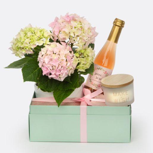 Geschenkset HAPPY BIRTHDAY mit Hortensie im Übertopf, Kerze und Sekt