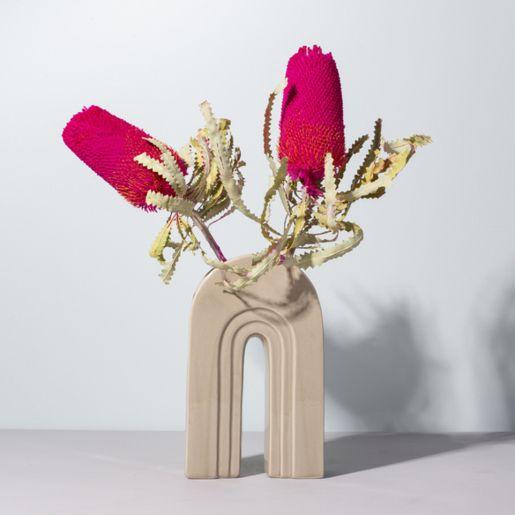 Banksia in Pink 2 Stück
