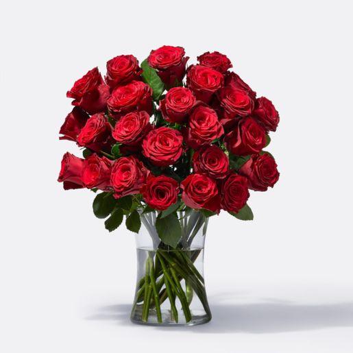 Rosenstrauß Premium-Rosen in Rot 25 Stiele