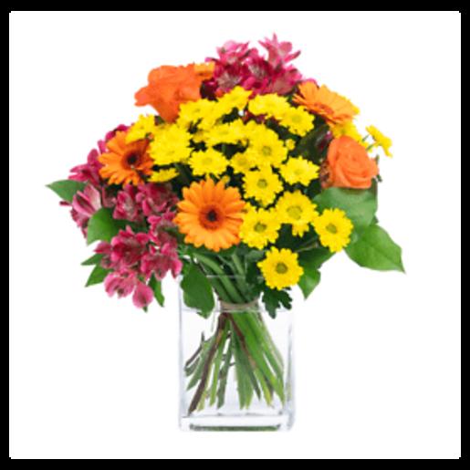 Viel Gesundheit! - | Fleurop Blumenversand
