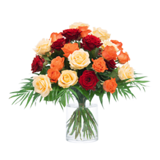 Rosenkuss - | Blumen verschicken