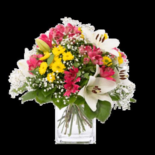 Fröhlich und aufgeweckt - | Fleurop Blumenversand