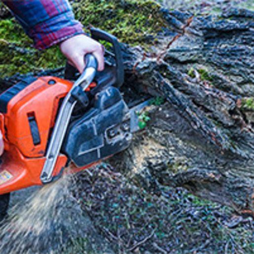 Holzfaeller-Kurs mit Kettensaegenschein