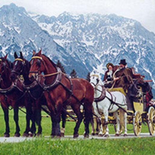 Urlaub mit Kutsche im Allgaeu (5 Tage)