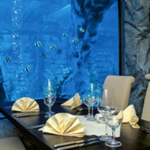 Gourmet-Menue im Unterwasser-Restaurant in Neuwied fuer 2