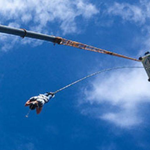 70 Meter Bungee-Sprung ueber Wasser in Recklinghausen