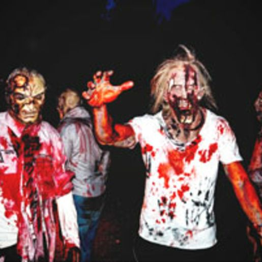 The Living Dead Experience