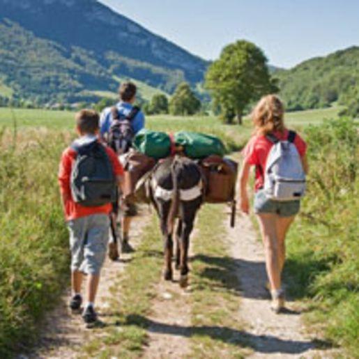 Gefuehrte Eselwanderung fuer Familien im Sauerland
