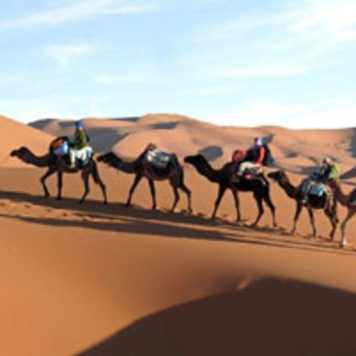 Wuesten-Expedition in der Sahara