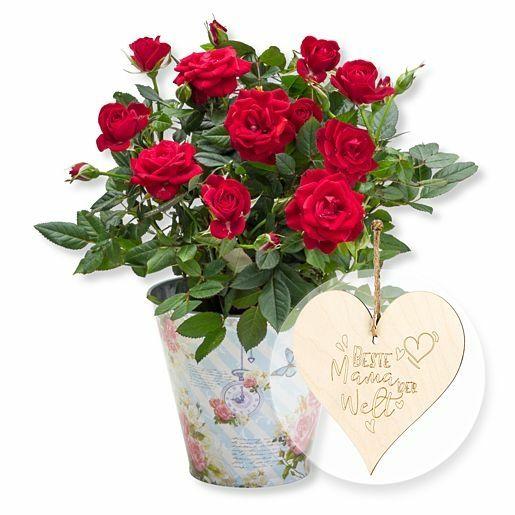 Rote Rose im romantischen Nostalgie-Topf und Vintage-Herz Beste Mama der Welt!