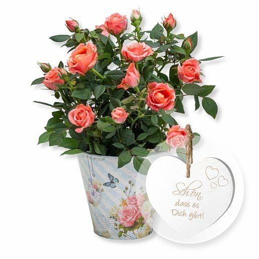 Orangefarbene Rose im romantischen Nostalgie-Topf und Vintage-Herz Schön, dass es Dich gibt!