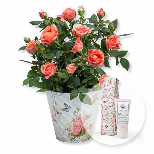 Orangefarbene Rose im romantischen Nostalgie-Topf und Blütenrausch Pfingstrosen-Handcreme Für Dich