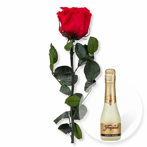 Rote Infinity-Rose und Freixenet Semi Seco
