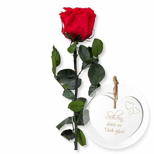 Rote Infinity-Rose und Vintage-Herz Schön, dass es Dich gibt!
