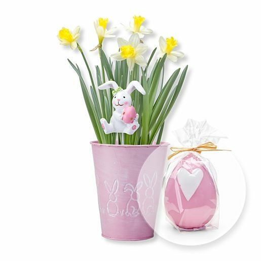 Narzisse mit Hasenstecker in Zinktopf und rosa Eikerze