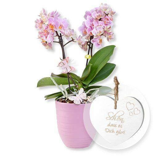 Rosa Orchidee im fliederfarbenem Keramiktopf und Vintage-Herz Schön, dass es Dich gibt!