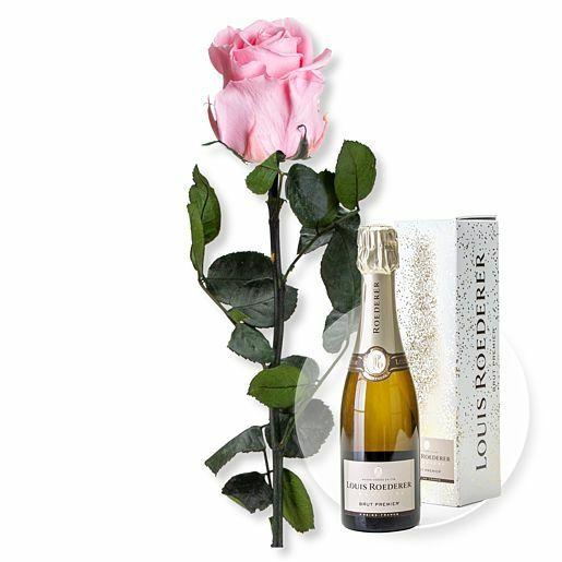 Rosafarbene Infinity-Rose und Champagner Louis Roederer Brut Premier