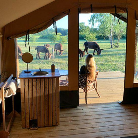 Camping im Tierpark Arche Warder für 2 (2 Nächte)